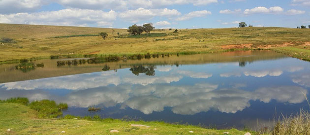 Field & Stream - Dullstroom accommodation - Mpumalanga
