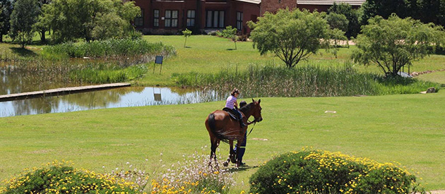 Dullstroom Accommodation, Machadodorp Accommodation, spa near dullstroom, highlands spa, highlands accommodation, Belfast accommodation